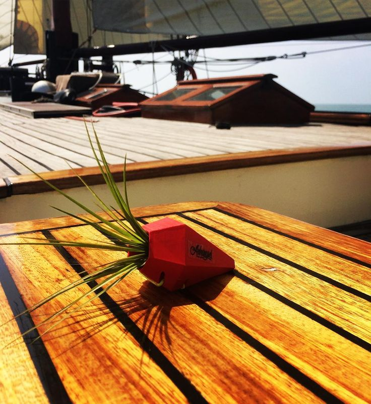 Anhängsel_alwaysaround is now also sailing in the netherlands #anhaengsel #alwaysaround #sailing #sailingboat #netherlands #ijsselmeer #segeln #holland #startup #3dprinting #geschenk #musthave #see #sea by anhaengsel_alwaysaround