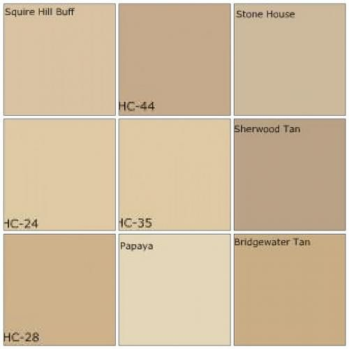 Best Beige Color Paint