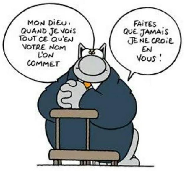 50 best images about le chat on pinterest canon animaux - Dessin chat humour ...