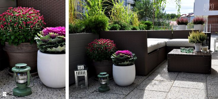 Ogród - zdjęcie od APPO projekt - Ogród - APPO projekt