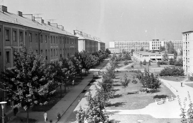 Egy kor és egy szakma fotókon - az 1950-es évektől az 1980-as évek elejéig | Építésügyi portál