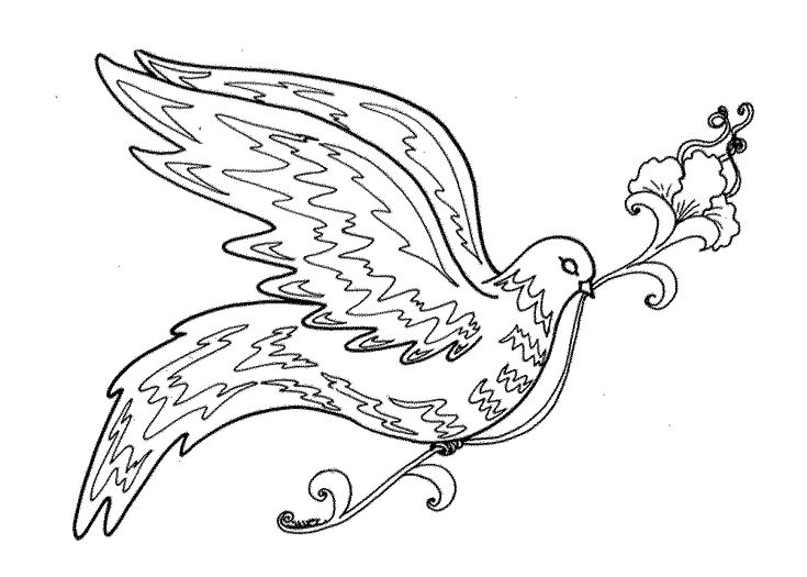 Bird Coloring Pages For Adults Free