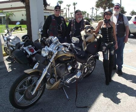 36 Best Daytona Bike Week Images On Pinterest Biking