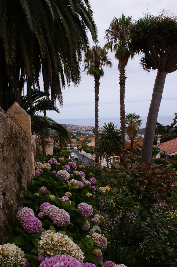 La Orotava - Tenerife
