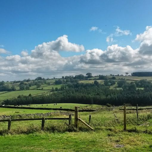 Swinton Bivouac in North Yorkshire countryside. #Camping #Glamping #Yorkshire