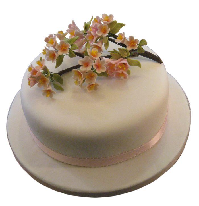 Cherry Blossoms  #sugarflowers #sugarart #sugarcraft #cakeart #cakedecorating #sugarflower #cakeartist #sugarpaste #sugarartist #gumpaste