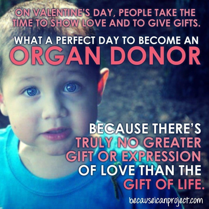 organ donation keeping the gift of His decision to donate organs has helped save multiple lives well before patrick palardy's death last year he had decided he would be an organ donor, something that his friends and family said is keeping with his giving nature.