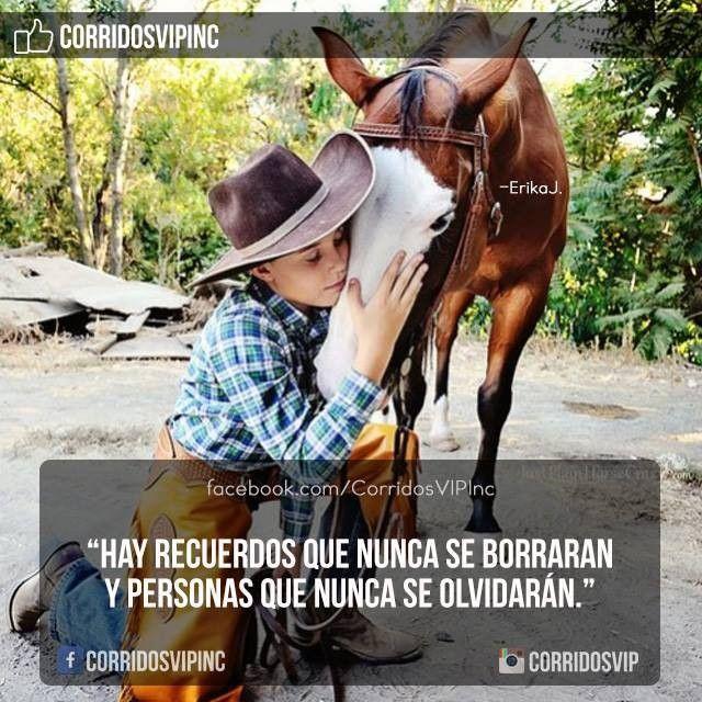 Exacto.! ____________________ #teamcorridosvip #corridosvip #corridosybanda #corridos #quotes #regionalmexicano #frasesvip #promotion #promo #corridosgram