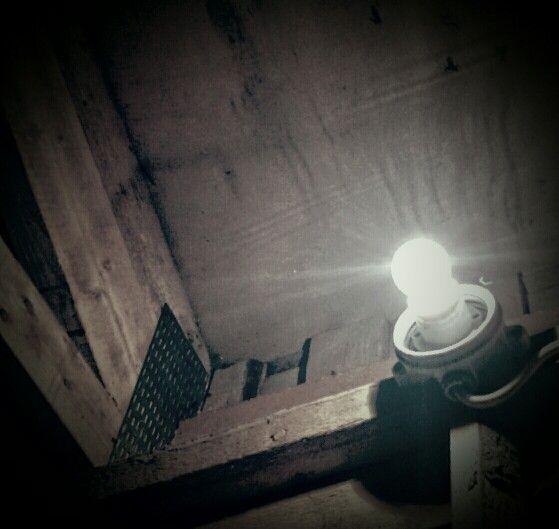 Puuliiterin valo