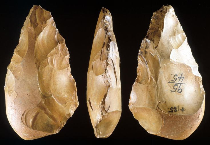 Acheulean Period Acheulean Hand Axes From Thebes Egypt