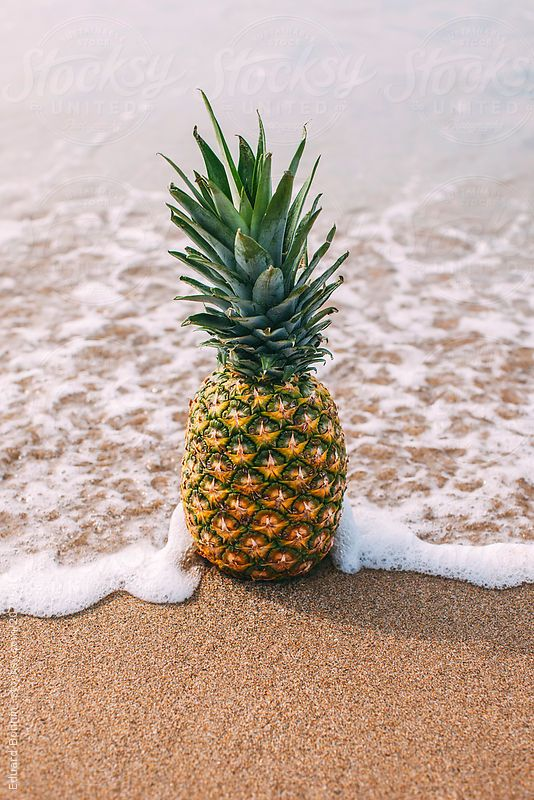 Pineapple on the beach. Summer time by Eduard Bonnin #stocksy #realstock