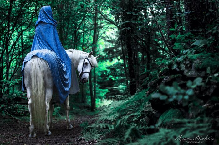 Foto: Miina Anahita   Kan jag bara få säga att min häst är fantastiskt? Verkligen. Han är en på miljonen. Min ståtliga springare, min vapendragare, min bror under solen. Varje dag med honom är…