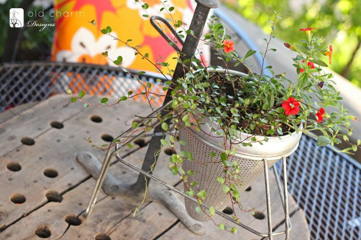 Food mill used as a planter via Inspired by Charm