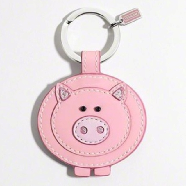 I just got this for my birthday!! Coach pig key chain <3<3<3