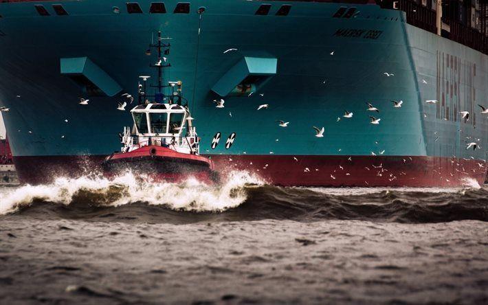 壁紙をダウンロードする ちょカモメのかもめろ, コンテナ船, maerskエセックス, 港, 綱, maersk線