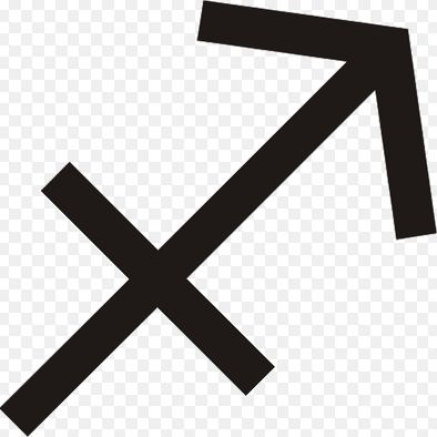 My Zodiac Sign is Sagittarius
