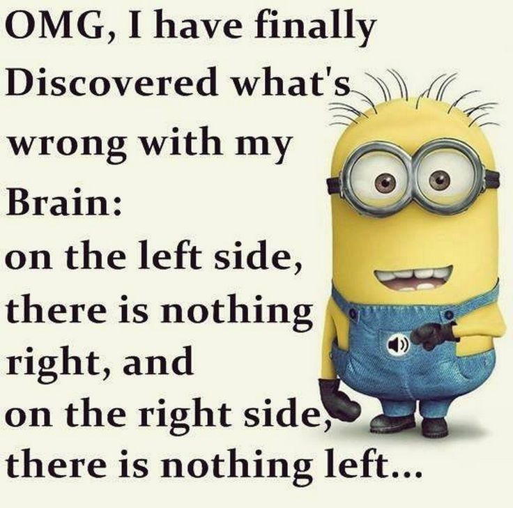 17 Best Ideas About Funny Minion On Pinterest: 17 Best Ideas About Facebook Jokes On Pinterest