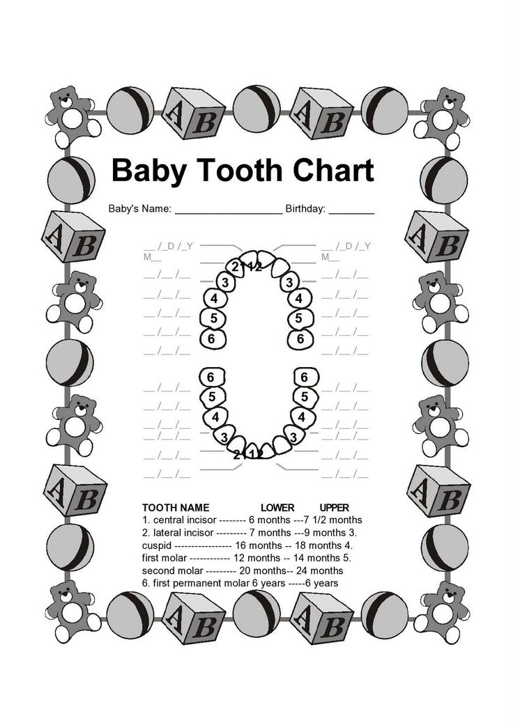 Best 25+ Tooth Chart Ideas That You Will Like On Pinterest | Baby
