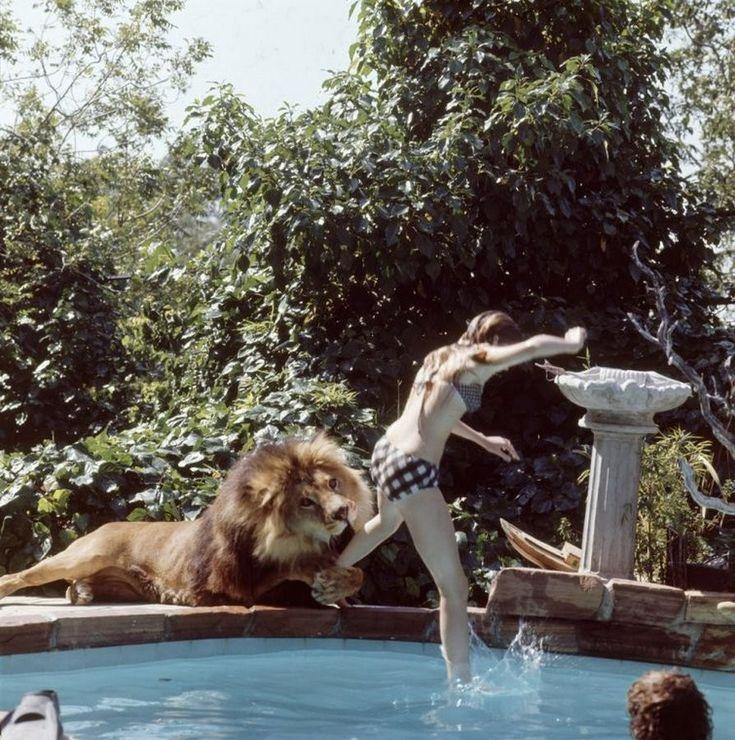 Невероятные фотографии из 70 х: Мелани Гриффит и лев Нил