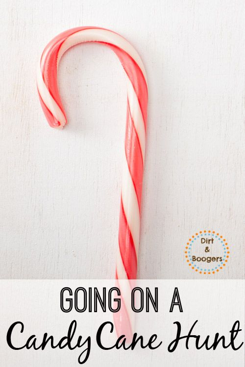 A fun Christmas activity that the whole family will enjoy!  Let's go on a Candy Cane Hunt!  I love simple kid activities like this.