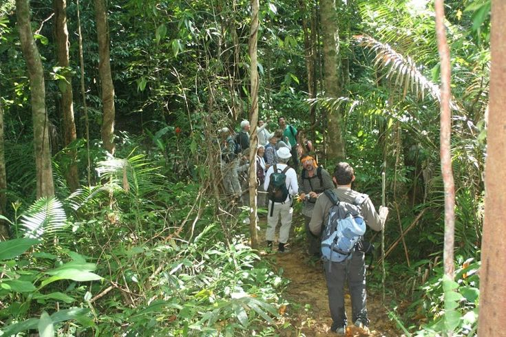 TREKKING IN A ROANG A LUOI