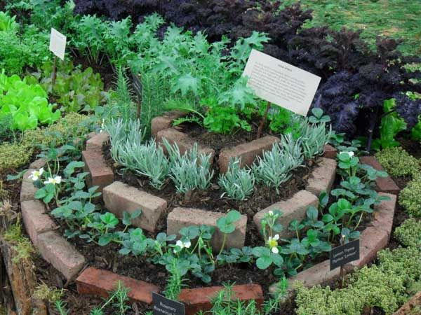 Herb spiral made with recycled bricks - part of the enchanted food forest at www.abundantnaturegarden.com
