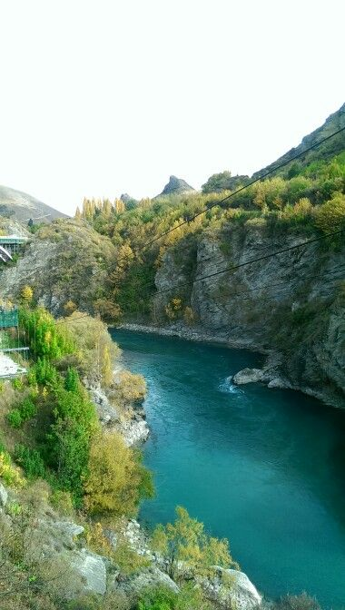 Bungy View