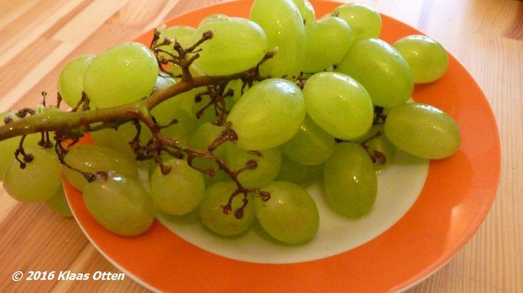 Gewoon saampjes aan de #druif op een zonnige dag in #DenHelder ! 😃 #gewoonomdathetkan! 😉