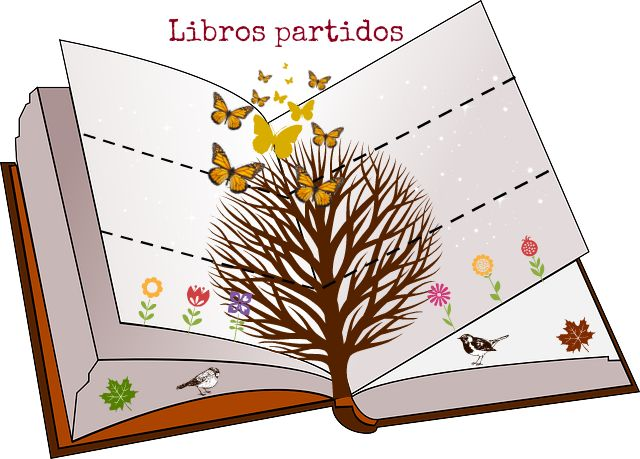 LAPICERO MÁGICO: Libros partidos