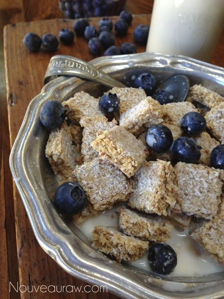 Raw shredded coconut almond breakfast bites. So of like wheat bites but with no wheat. Good way to use the pulp left from making almond milk. #vegan #glutenfree