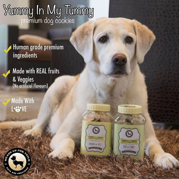 Yummy in my Tummy treats are Healthy and wholesome Made with fresh fruits and vegetables No artificial flavours Made with Human Grade Ingredients No sugar MRP: Rs. 149 Only! Available in 5 flavours: Banana & Oats, Apple & Cinnamon; Pumpkin & Carrots, Mint & Fennel (breath freshener), Chicken