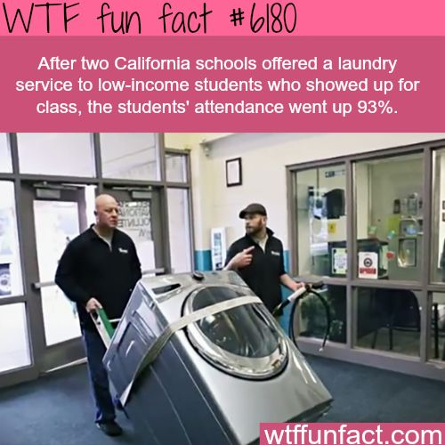 How two school districts in California increased attendance - Faith In Humanity Restored! ~WTF fun facts
