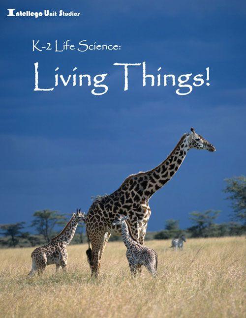 Intellego Unit Study: Living Things