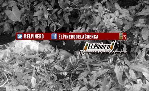 Presunto grupo de Autodefensa levantaron y ejecutaron a las cuatro personas halladas en Uxpanapa el sábado - El Pinero