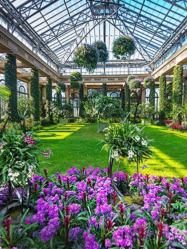 Topiaries and Orchids Galore What: Longwood Gardens Where: Kennett Square, Pennsylvania opulent and sophisticated garden worthy of the glamorous roaring '20s.  1,100-acre property includes a conservatory full of 2,300 types of orchids, towering topiaries, and fountains