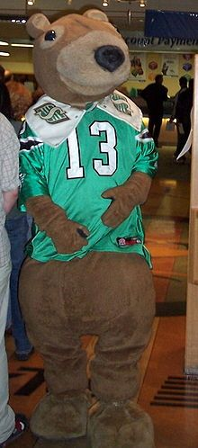 Our mascot, Gainer the Gopher from Parkbeg SK