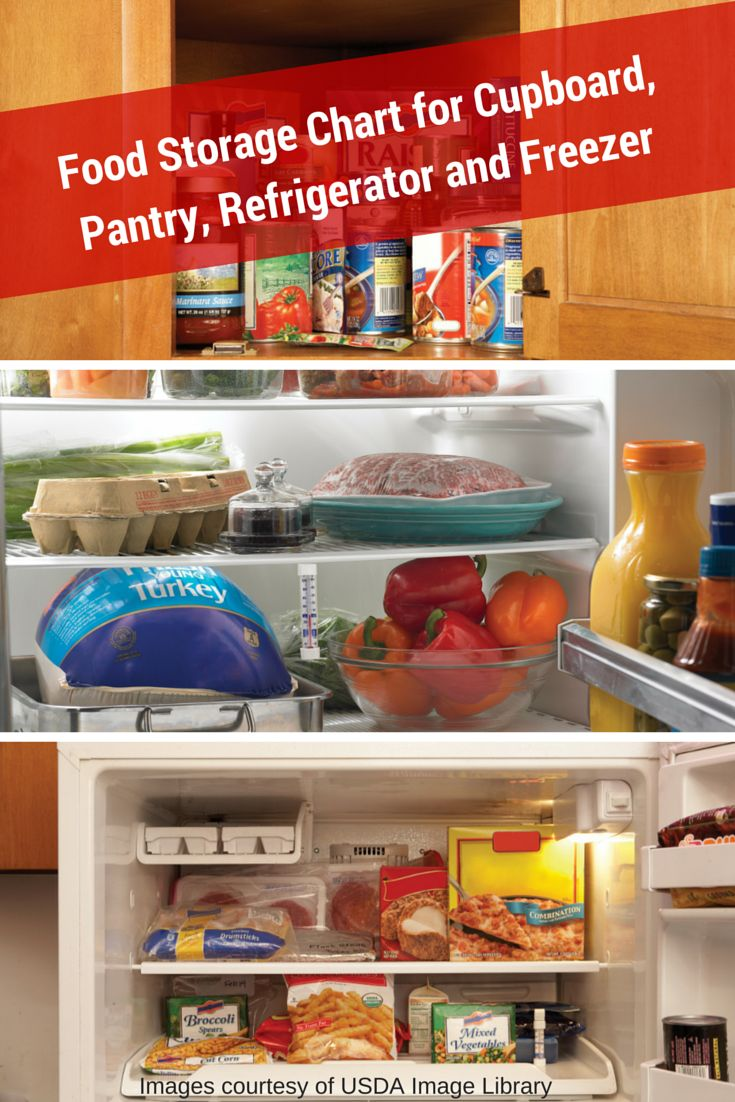 Are You Storing Food Safely? - Food and Drug Administration