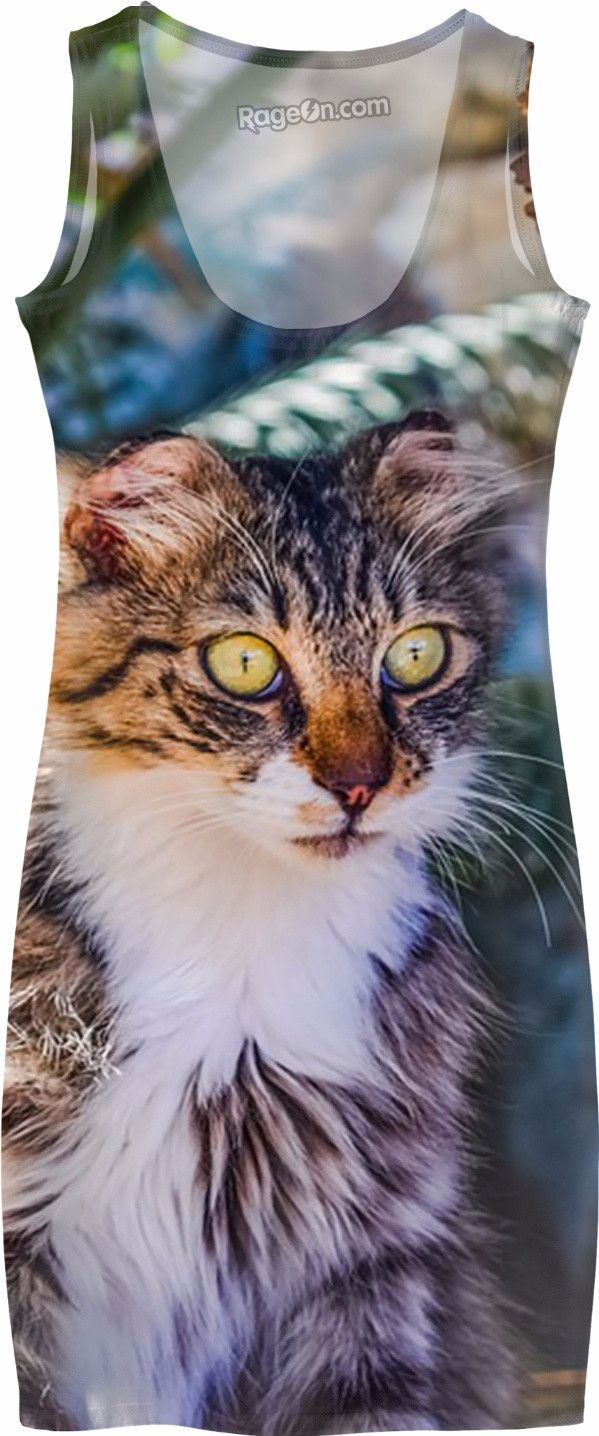 Check out my new product https://www.rageon.com/products/funny-cat-simple-dress-1?aff=BWeX on RageOn!
