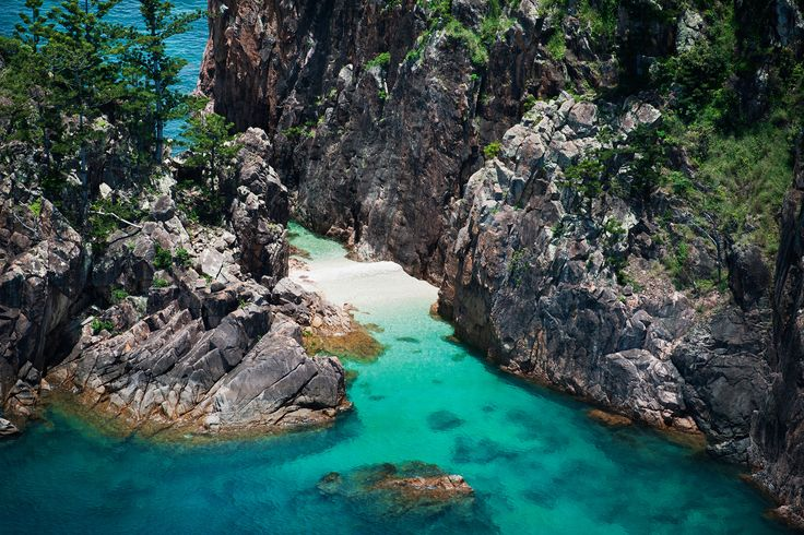 Blue Pearl Bay on Hayman Island is a popular place to go snorkelling in the Great Barrier Reef Marine Park
