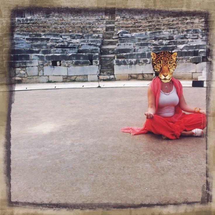 Yogi panther