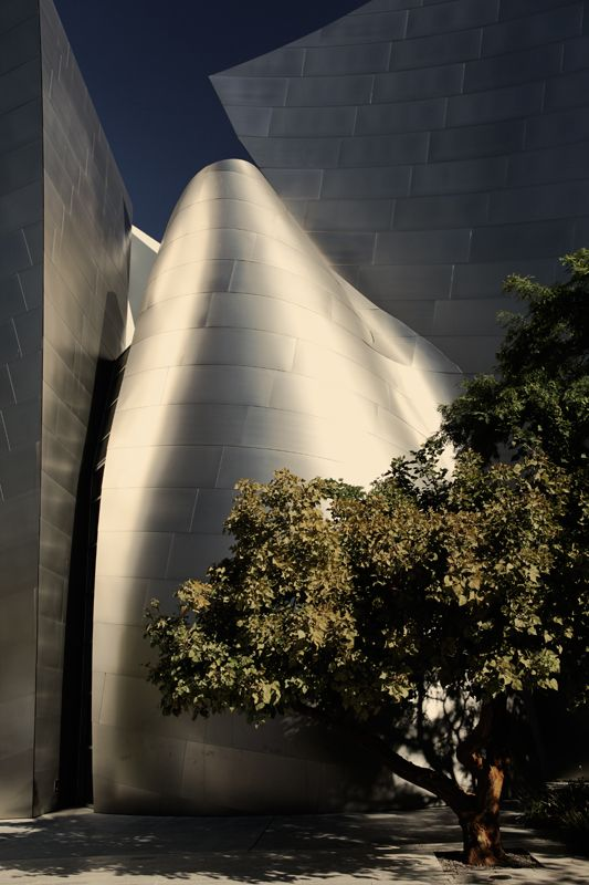 Walt Disney Concert Hall | Architect Fank O.Gehry