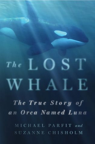 The Lost Whale ~ The True Story of an Orca Named Luna