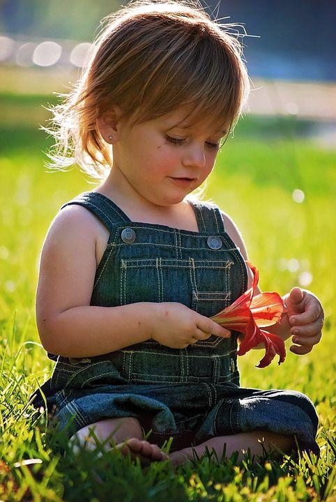 Un bebé es más vulnerable que un adulto a la picadura de un insecto, ¿como elegir un repelente de insectos?