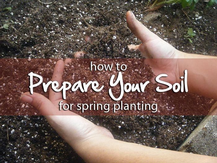 how to prepare your soil for spring planting #spring #garden #soil
