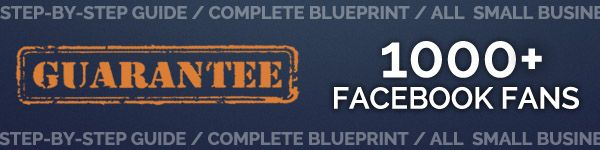 [GET] Facebook: A Step-By-Step Guide to Your First 1000 Likes