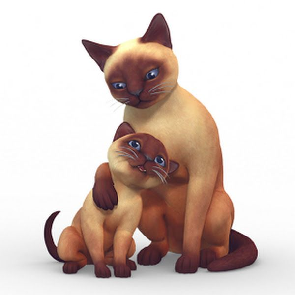 Sims  Cats And Dogs More Traits Mod