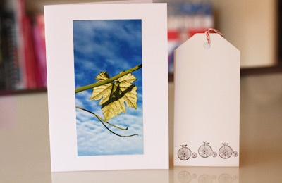 greeting card and gift tag from Kate (Another Donkey Design)