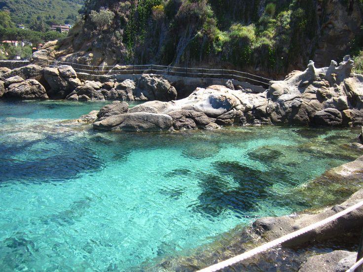 Sant' Andrea Isola d' Elba