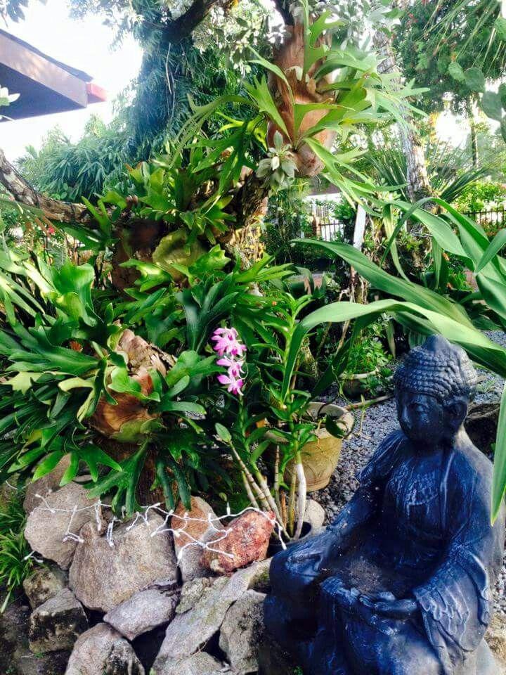 1750 best Garden Design images on Pinterest Feng shui, Plants - feng shui garten bagua