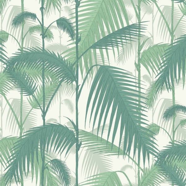 Cole and Son Palm Jungle 95/1002